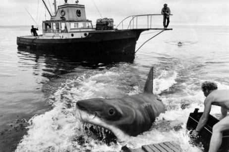 My Favourite Things About JAWS Man vs Beast filming