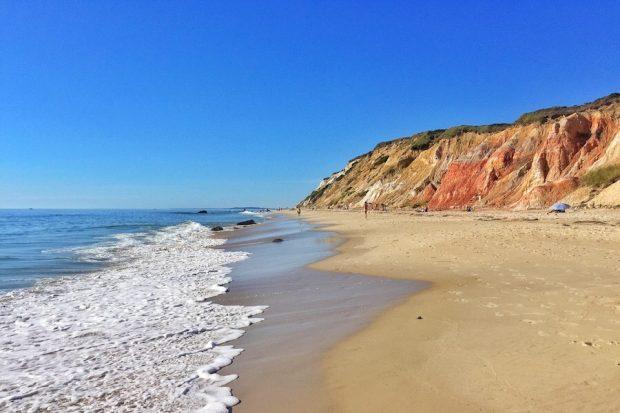 Must Do's Up Island Moshup Beach
